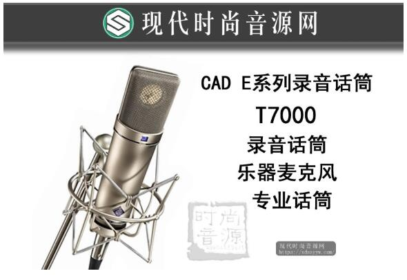 CAD E系列录音话筒 t7000 录音话筒 乐器麦克风 专业话筒