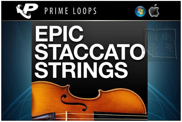 Prime Loops Epic Staccato Strings-现代电影流行弦乐素材