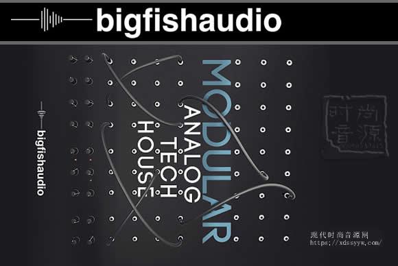 Big Fish Audio Modular Analog Tech House KONTAKT