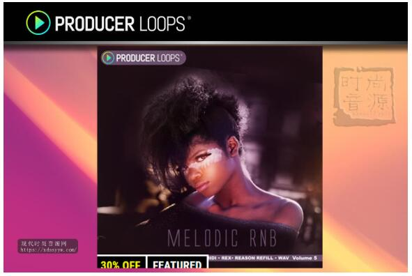 Producer Loops Melodic RnB Vol 5