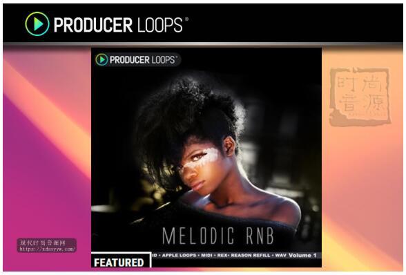 Producer Loops Melodic RnB Vol 1