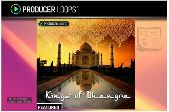 Producer Loops Kings of Bhangra Vol 1