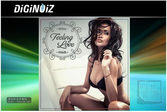 Diginoiz Feeling Love RnB
