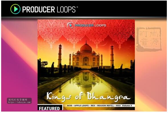 Producer Loops Kings of Bhangra Vol 3