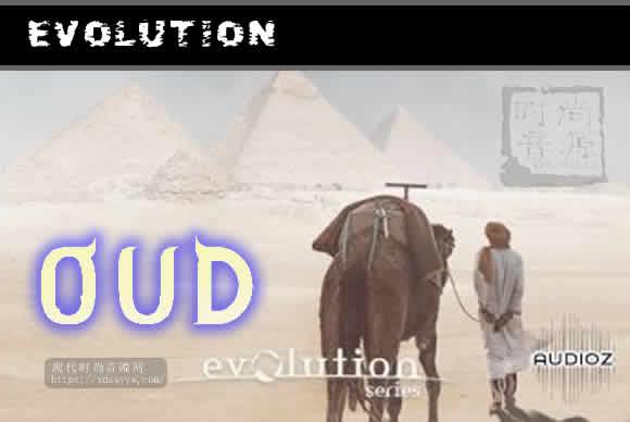 Evolution Series World Strings Oud KONTAKT世界弦乐音源