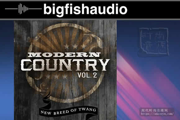 Big Fish Audio Modern Country Vol.2摩登国度