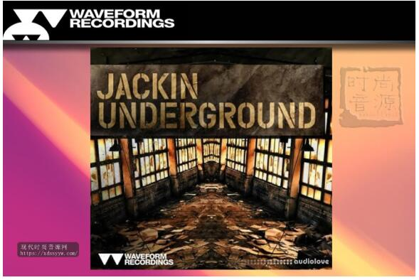 Waveform Recordings Jackin Underground 流行素材