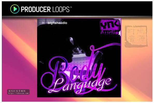 YNK Audio Body Language 经典流行素材