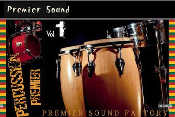 Premier Sound Factory Percussion Premier V1 KONTAK邦戈康加鼓