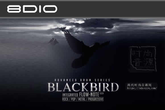 8DiO Advanced Drum Series Blackbird KONTAKT黑鸟鼓