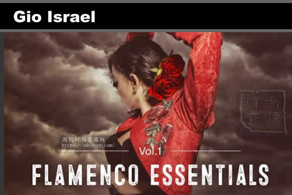 Gio Israel Flamenco Essentials Vol.1 [WAV]拉丁乐采样