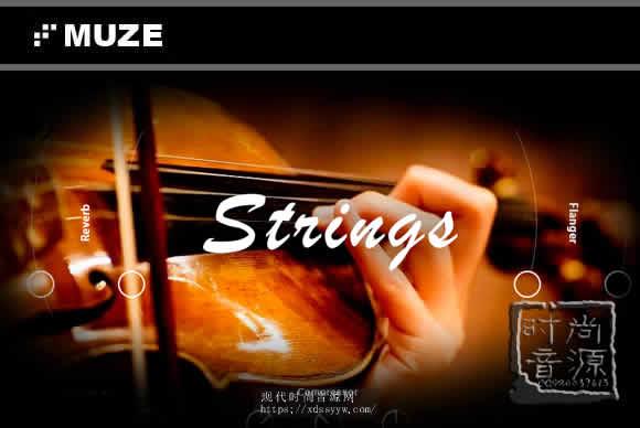 Muze Strings Solo KONTAKT弦乐独奏