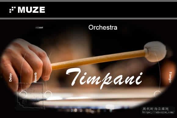 Muze Timpani KONTAKT定音鼓