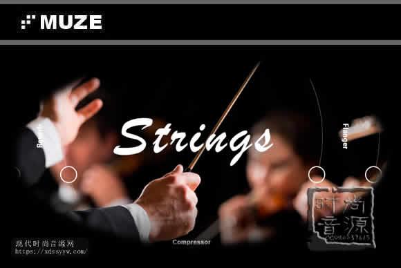 Muze Strings Ensemble KONTAKT弦乐合奏