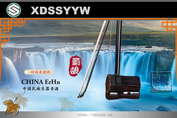 Chinese ErHu KONTAKT 2021中国民族乐器音源 二胡