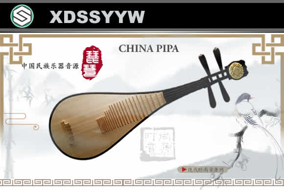Chinese PiPa KONTAKT 2021中国民族乐器音源 琵琶