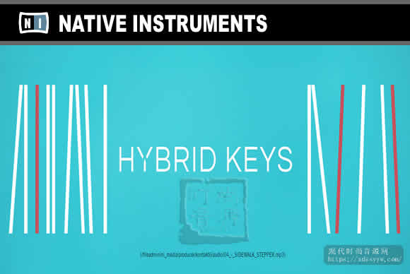 Native Instruments Hybrid Keys v2.0.2 KONTAKT独特的创意键盘